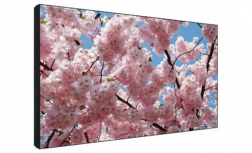 Профессиональная LCD панель Sharp PN-V601